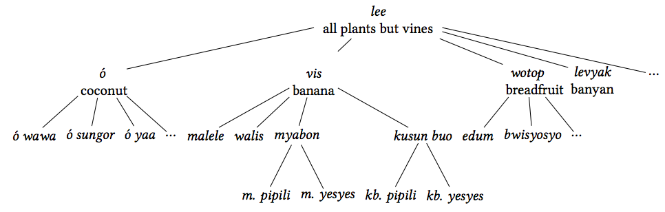 Taxonomy of plants with stalks or trunks
